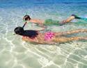 Description: http://www.nettravelease.com/bahamassnorkel.jpg